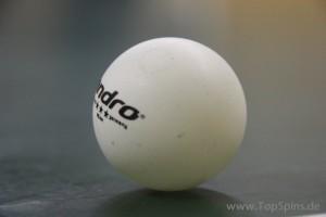 Tischtennis Ball - SG Weißig - Tischtennis in Dresden